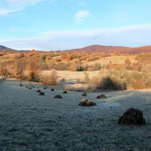Morning frost, Carpathia