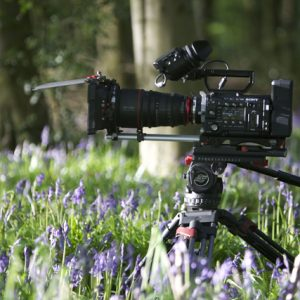 Our Sony F55 on location in a bluebells wood